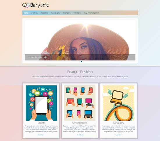 Baryonic-Free-Responsive-Template