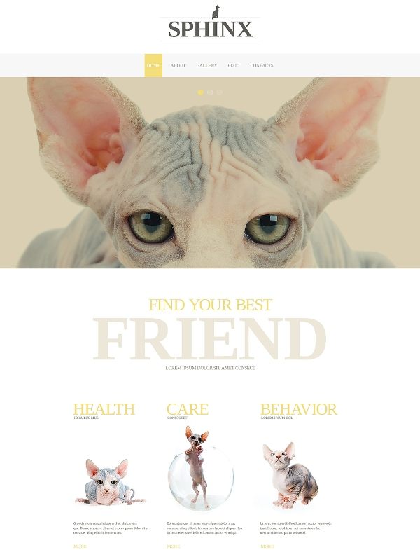 Pet Blog Template