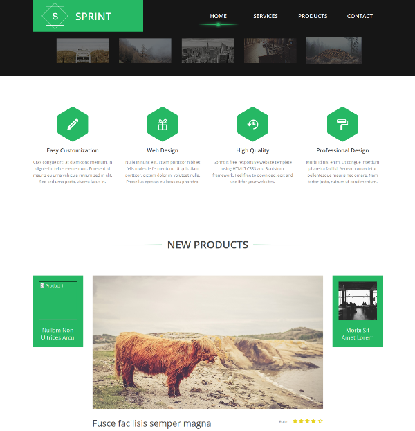 Sprint Free Bootstrap Website Template