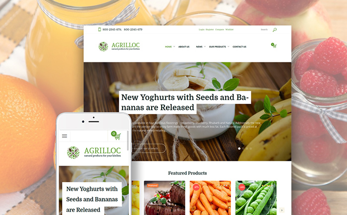 Healthy Food Store WooCommerce Theme