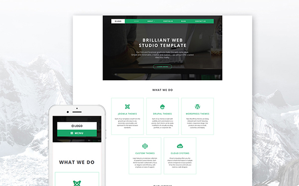 Web Design Company WP Theme